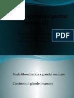 Patologia aparatului genital  feminin-glanda mamara (2)