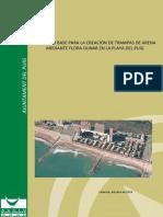 Proyecto trampas de arena playa del Puig.pdf