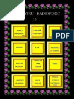 TEATRU RADIOFONIC 16