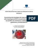 Caracterización Fenotípica de Cepas de Escherechia Coli uropatógena (UPEC) en pacientes pediátricos y sus perfiles de resistencia a aminoglucósidos, quinilonas y betaláctamidos