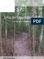 Erros Por Caminhos e Escolhas - Gustavo Souza - PqGustavo.blogspot