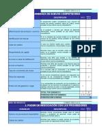 Matriz de Porter - Formato