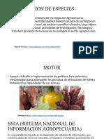 CERTIFICACIÓN DE ESPECIES