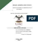 MERCADO DE CAPITALES Y MAPA CONCEPTUAL