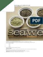 Entendiendo los tipos de algas en el cuidado de la piel