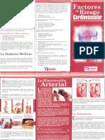 Folleto de factores de riesgo cardiovascular  (2)