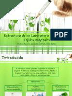 Estructura de Laboratorio