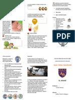 Triptico Dengue.pdf