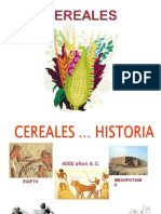 208829214-LOS-CEREALES-ppt.ppt