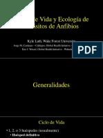 Parasitos de Anfibios Puno.pdf