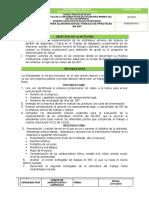 GUIA DE PI-SST.pdf