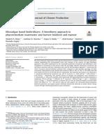 Khan 2019 Microalgae based biofertilizers
