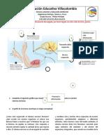 TALLER DE BIOLOGIA, FISICA Y QUIMICA 9-2.docx