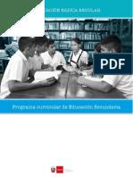 programa-nivel-secundaria-ebr word.docx