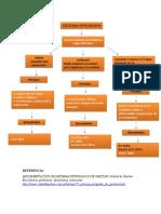 Mapa conceptual Poli.docx