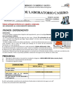 LABORATORIO DE MEMBRANA CELULAR  ZANAHORIA