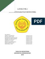 laporan pbl 1 blok saraf.docx