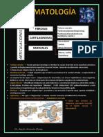 Reuma parte 1 Vasculitis ENARM2020.pdf