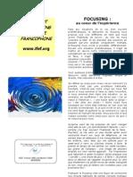IFEF Plaquette Presentation Focusing 2009
