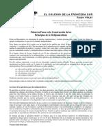 Principios meliponicultura 180517.pdf