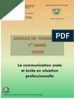 COMMUNICATION ORALE ET ÉCRITE EN SITUATION  PROFESSIONNELLE