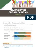 Chapter 02- Diversity on Organizations