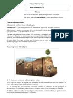 FInf.Nº6 - Fósseis