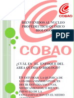 Diapositiva Quimico Biologo Animacion