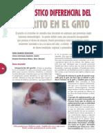 PRURITOGATO.pdf