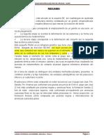 150928001-Informe-de-Lares-Amparaes.docx