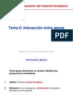Unidad_1_Tema_6_Interacción_entre_genes.pdf
