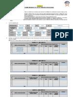 FORMATO 1 - INFORME MENSUAL DE ACTIVIDADES FINAL