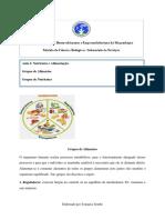 Aulas 2 e 3 Submodulo 2.pdf
