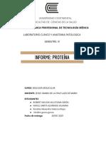 Grupo 2B__ Proteina