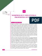 morphologyandgeneralandgeneralpropertiesoffungi-161220044546