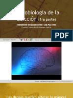 ADICC S03 C05 Neurobiología de La Adicción 01 (1)