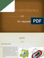 Clase 8 ADN y centriolo.pptx
