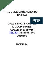 PLAN DE SANEAMIENTO SHOTS  MODELIA