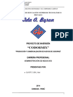 PROYECTO_CODORMIX