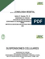 suspeciones celulares.pdf