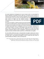 ae_sec_bg_magma.pdf