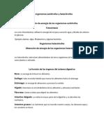 Los organismos autótrofos y heterótrofos.docxx2x2