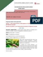 GUIA 10° ARTICULADA.pdf