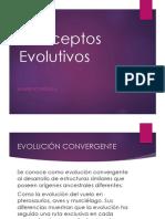 Clase 9. Conceptos Evolutivos