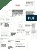 Mapa conceptual sobre Bioseguridad. Katherinn Puerta.