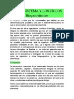 EL ECOSISTEMA Y LOS CICLOS BIOGEOQUÍMICOS