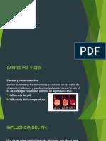 CARNES PSE Y DFS