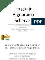 01 Lenguaje Algebraico