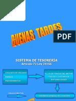 sistema de tesoreria