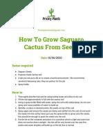 how to grow saguaro cactus from seeds